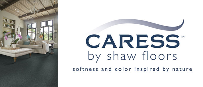Discount Caress Carpet By Shaw In Scottsdale Az Carpet