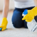 Don't Make These Common Carpet Cleaning Mistakes