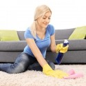 Prioritize Carpets for Spring Cleaning