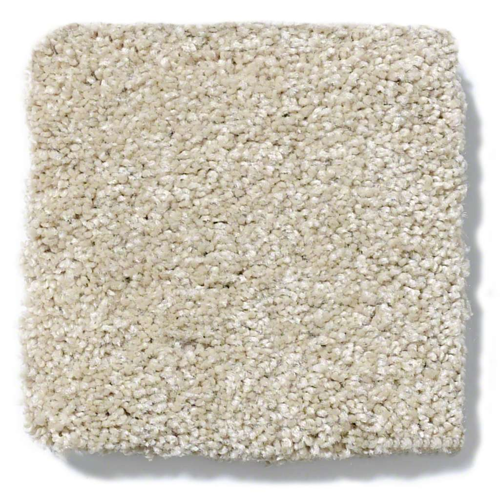 Shaw Quot Take The Floor Ii Quot Discount Nylon Carpet For Sale In
