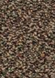 Groundworks Carpet Tile